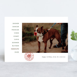 Sleigh Crew Holiday Photo Cards