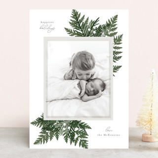 Natures Grace Holiday Photo Cards