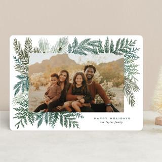 Evergreen Variety Holiday Photo Cards