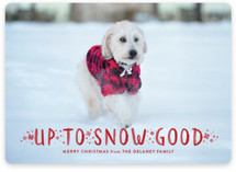 Snow Good Holiday Photo Cards