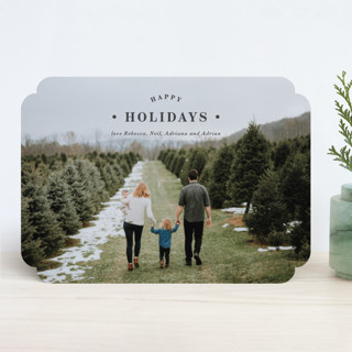 Merrily Framed Holiday Photo Cards