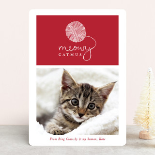 Meowy Catmus Holiday Photo Cards