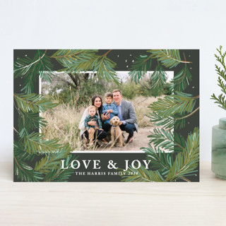 Winter Pine Holiday Photo Cards