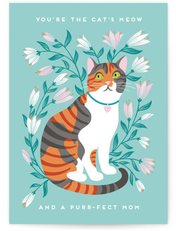 Purr-fect Mom Individual Mother's Day Greeting Cards