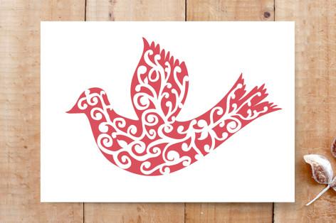 Snow Dove Cards
