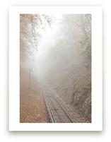 Mountain train track in misty fall.