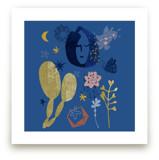 Cactus Night by Eva Marion