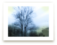 Storm Beauty by Monica Janes Fine Art