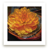 Golden Water Lily Dahli... by A MAZ Design