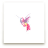 Hello Hummingbird by Jocelyn Edin