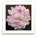 Pink White Waterlily Da... by A MAZ Design