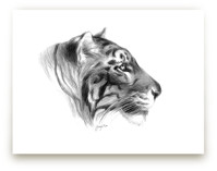 Tiger Profile by Tracy Ann