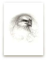 Eagle Gaze by Tracy Ann