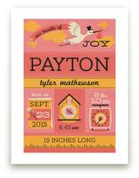Bundle of Joy by Tara Lilly Studio
