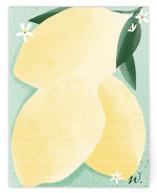Lemony Note by Michele Norris