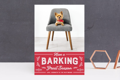 barking great season Holiday Photo Cards