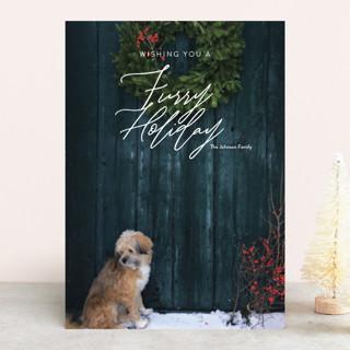 Furry Christmas Holiday Photo Cards