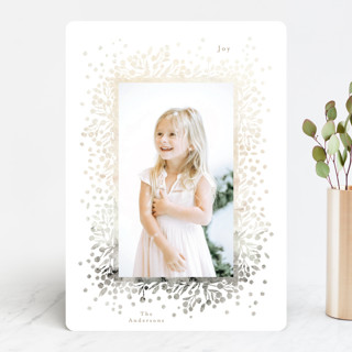ombre berries Holiday Photo Cards