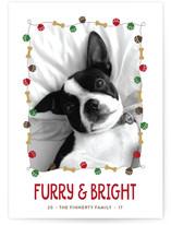 Jingle Bones Holiday Photo Cards