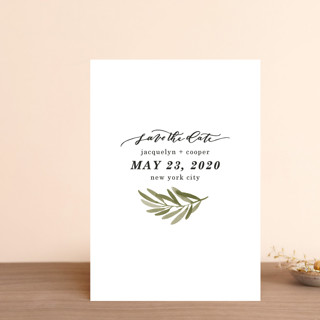 Olive Branch Save the Date Petite Cards