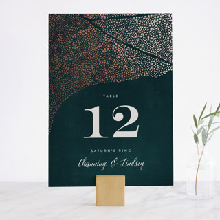 The Milky Way Foil-Pressed Wedding Table Numbers