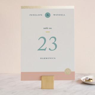 Paradigm Pair Foil-Pressed Wedding Table Numbers