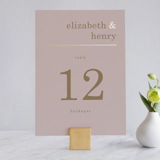Textbook Foil-Pressed Wedding Table Numbers