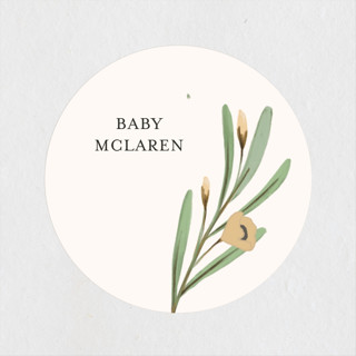Here comes Baby Baby Shower Stickers